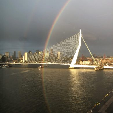 De 1ste maanden van Joey bij het Havenbedrijf Rotterdam